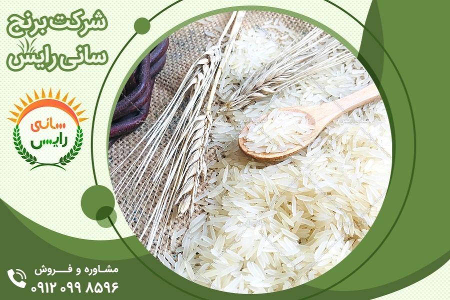 خرید و فروش برنج هندی در بازار بین المللی
