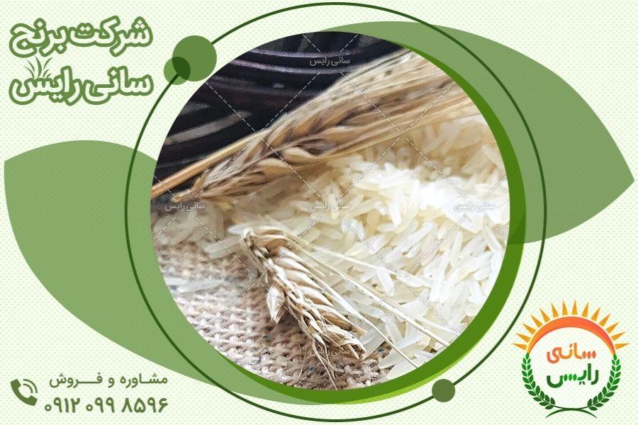 مراکز فروش برنج هندی در ایران