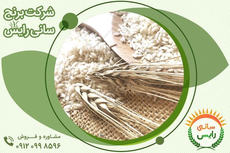 قیمت برنج عنبربو درجه یک در سال 99