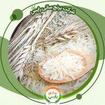 بهترین قیمت فروش برنج هندی در فروشگاه های ایران یافت می شود. برنج هندی به خاطر کیفیت و قیمت مناسبی که دارد توانسته است بین بقیه برنج ها محبوبیت خود را چه در داخل کشور چه در قسمت بین المللی حفظ کند.