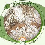 مرکز فروش برنج عنبربو حسنی