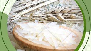 فروش عمده برنج هندی طبیعت