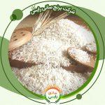 قیمت برنج پاکستانی طبیعت عمده