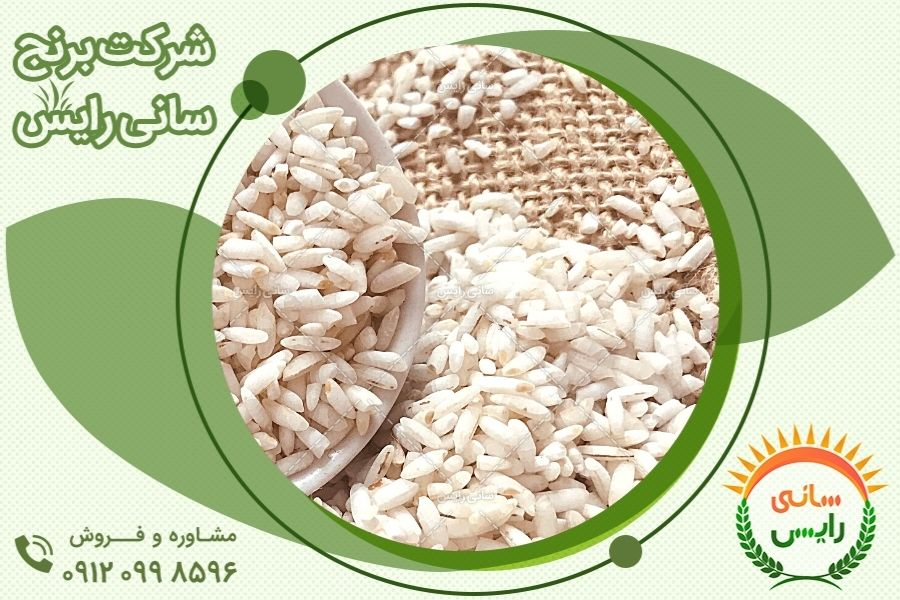 برنج عنبربو شوشتر بهترین برنج ایران