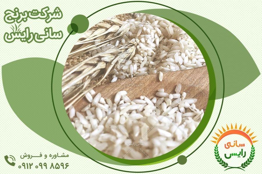 جدیدترین قیمت برنج عنبربو با کیفیت در بازار