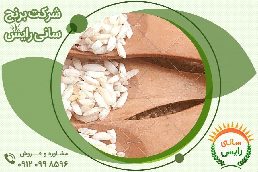 فروش بدون واسطه برنج عنبربو ماه دانه
