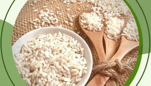 خرید برنج عنبربو فدک به صورت آنلاین