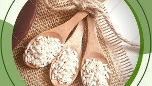 خرید مستقیم از شرکت برنج عنبربو اهواز