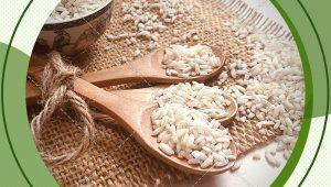 عرضه مستقیم برنج عنبربو شمال