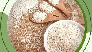 عرضه مستقیم برنج عنبربو علی