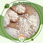 خرید عمده برنج عنبربو برکت