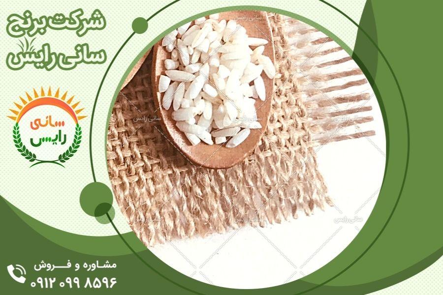 کاشت و تولید برنج عنبربو