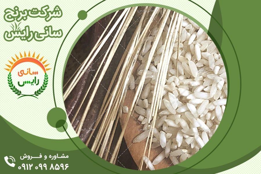 طبع برنج عنبربو جنوب