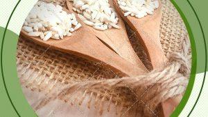 مزرکز فروش برنج عنبربو نجفی