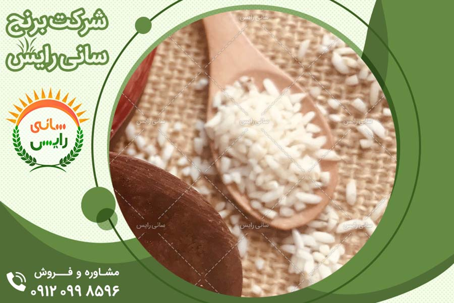 صادرات بهترین برنج های موجود در بازار