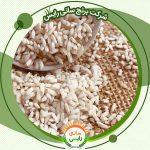 اطلاع از جدیدترین قیمت برنج عنبربو در خوزستان