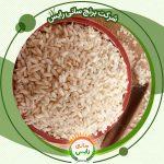 خرید مناسبترین قیمت برنج عنبربو چمپا