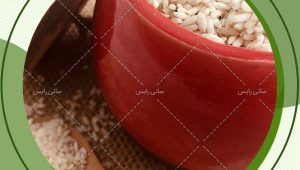 جدیدترین قیمت برنج عنبربو ممتاز